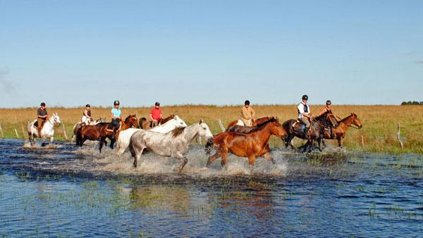 Ranch i Argentina