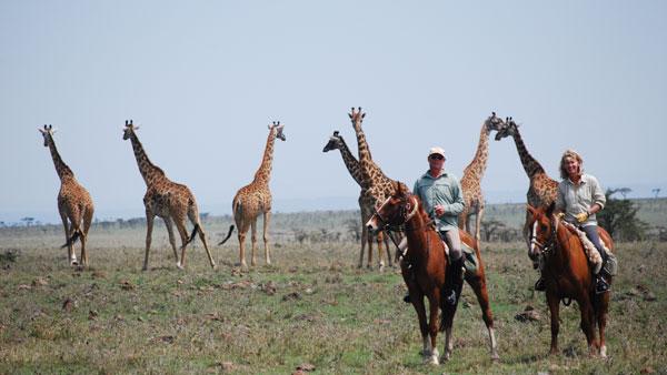 Ridsafari i Kenya FILM