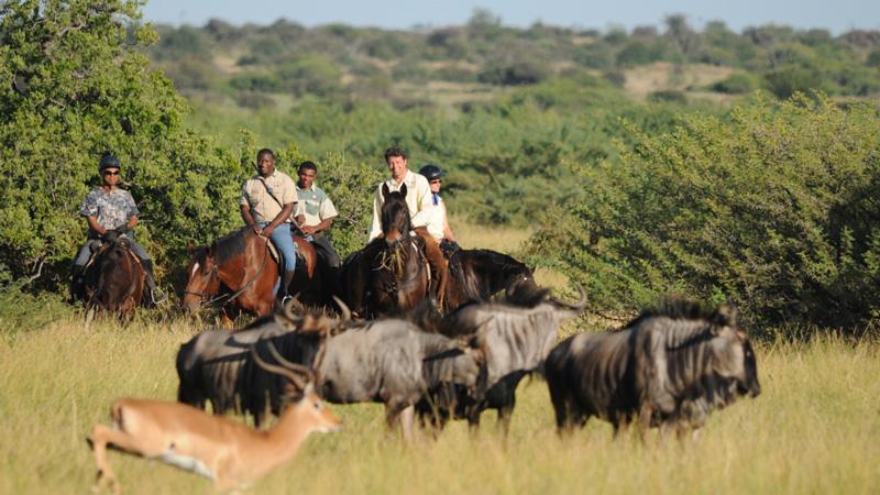 Botswana - Tuli Safari