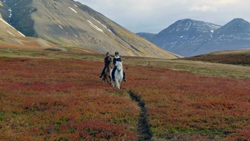 Island, Norra - Höstfärger och norrsken