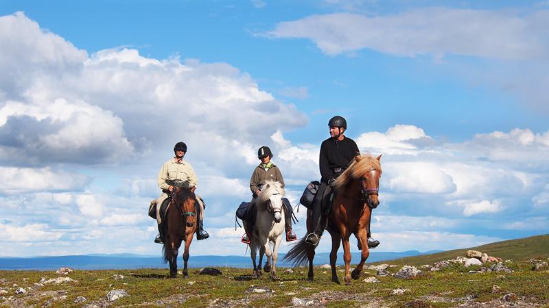 Sverige, Lappland - Må gott till häst i Kebnekaisefjällen ()