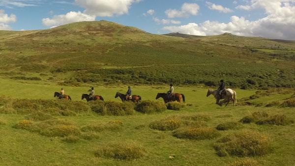Storbritannien, Dartmoor