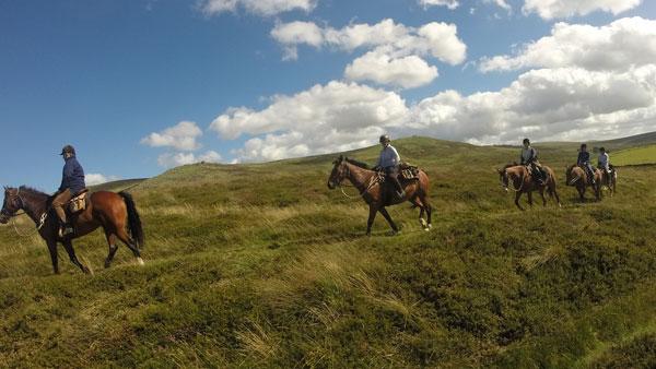 Storbritannien, Dartmoore